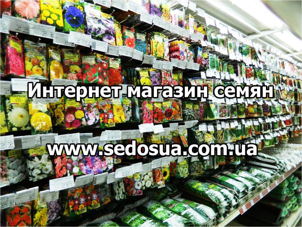 агропоиск интернет магазин семена